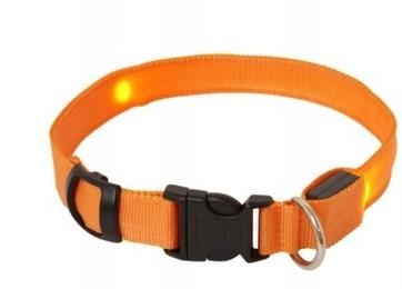 LED obojok: M Max 50cm – oranžový